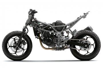 2014年モデル Z250SL ABS (BR250FEF)※インドネシア仕様 スタイリング