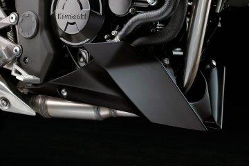 2014年モデル Z250SL (BR250EEF)※マレーシア仕様 フィーチャーカット
