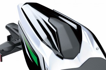 2019年モデル Z250