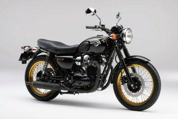 2011年モデル W800(EJ800ABF) Special Edition