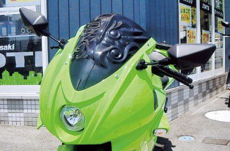 Ninja250R アーマードレリーフ TYPE1