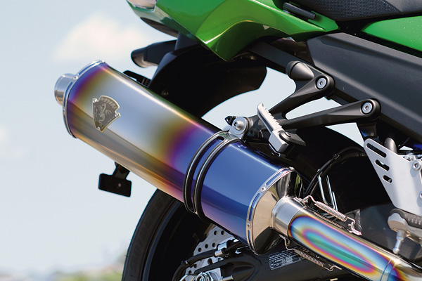 WYVERN for Ninja ZX-14R by r's gear