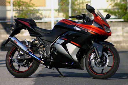 Kawasaki NET彩 オリジナルコンプリート Ninja 250R