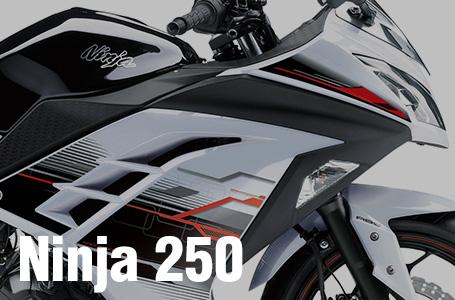 [Ninja 250/ABS/Special Edition]2014年モデルの(現時点の)カラーリングが発表