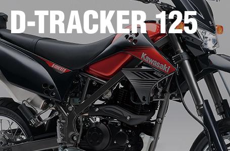 2014年モデル D-TRACKER 125
