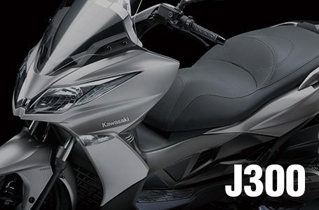 2014年モデル J300