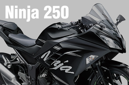 2017年モデル Ninja 250 ABS KRT Winter Test Edition