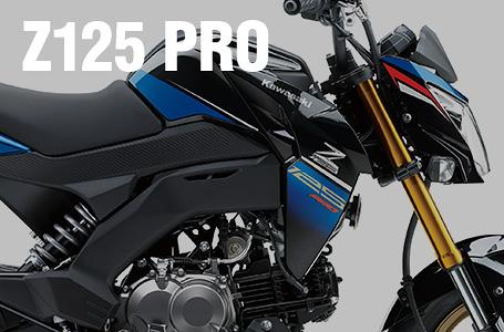 2017年モデル Z125 PRO