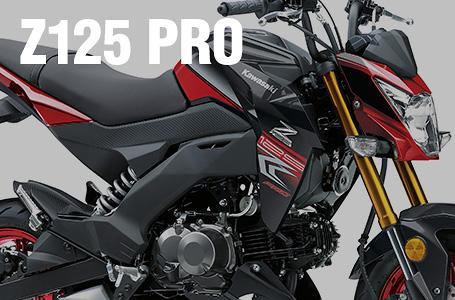 2018年モデル Z125 PRO