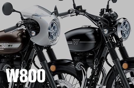 2019年モデル W800 STREET / CAFE