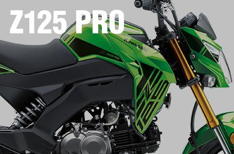2019年モデル Z125 PRO