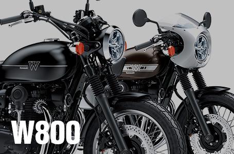 2019年モデル W800 STREET/CAFE 国内仕様