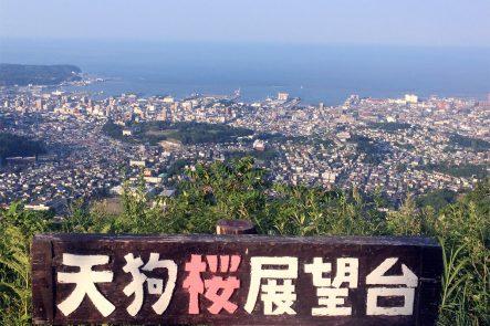 天狗桜展望台